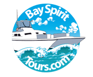 Bay Spirit Tours